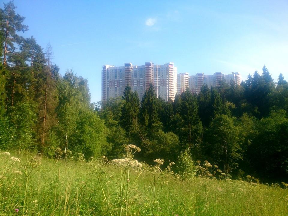 дмитровские холмы маршрут трек